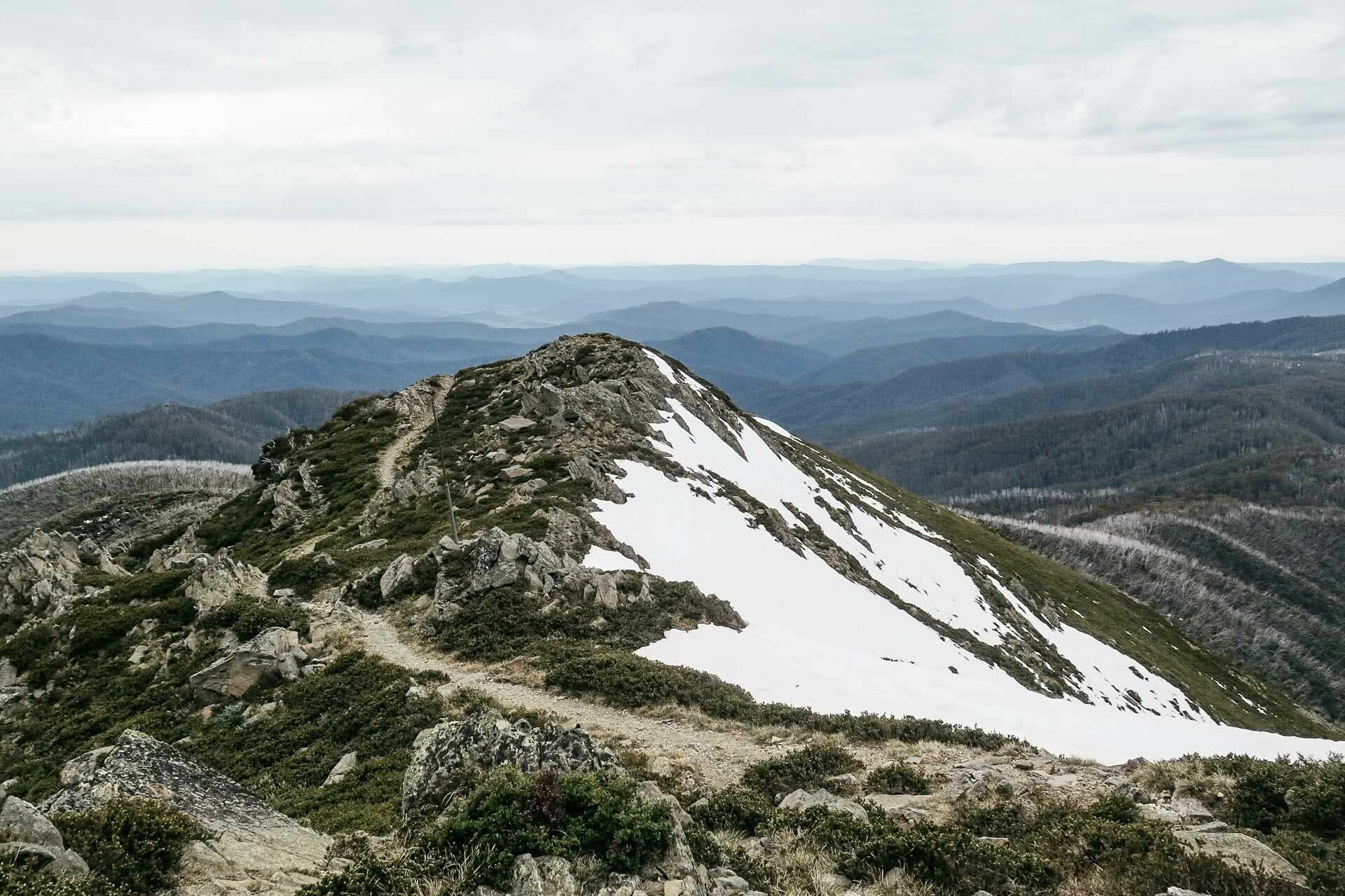 kale munro, earning your turns in a pandemic, mt bogong, victorian high country, splitboarding