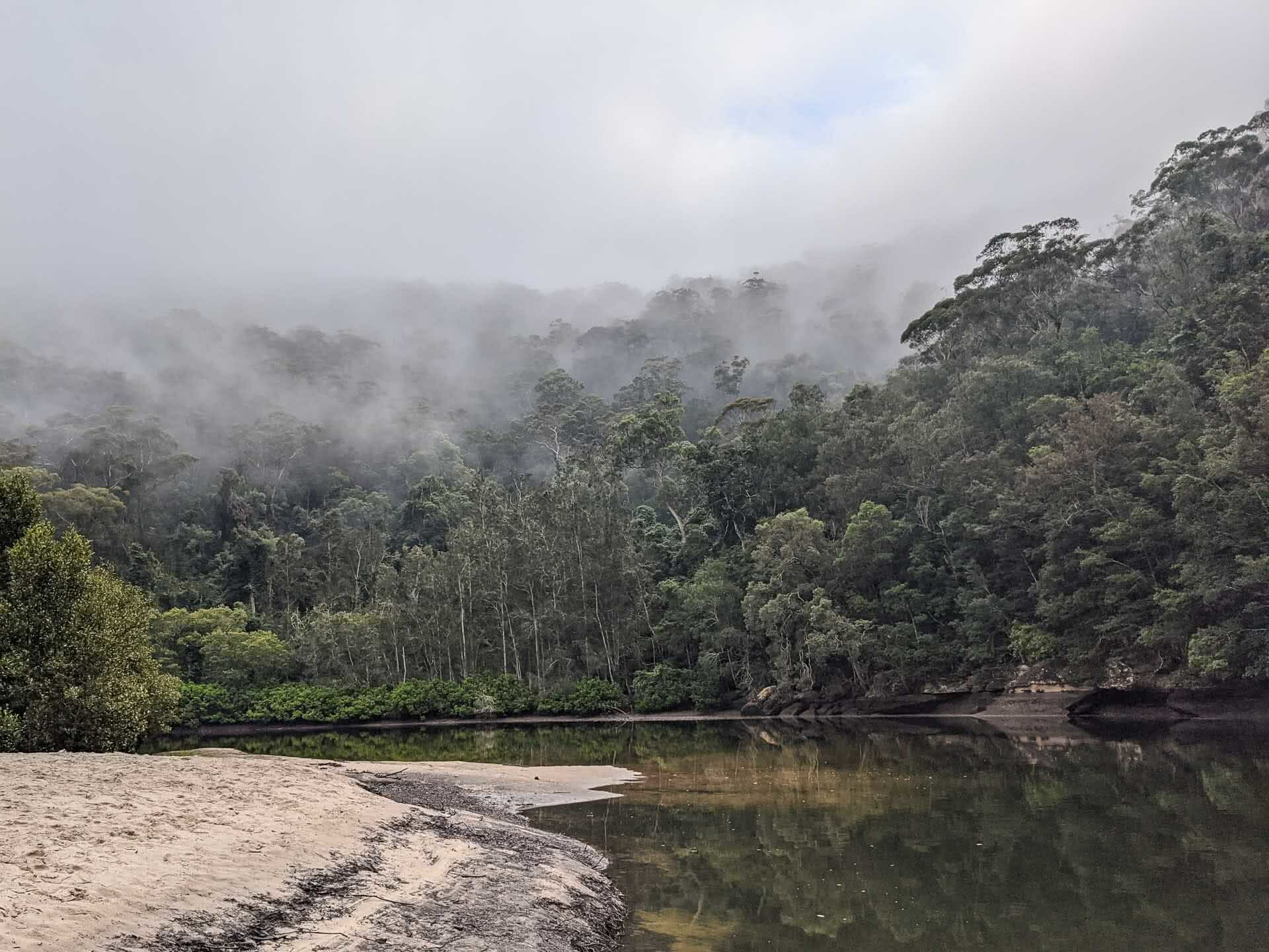 Hiking the Great North Walk – Sydney's 250km Thru Hike, jason reeves, sydney to newcastle, nsw, crosslands reserve