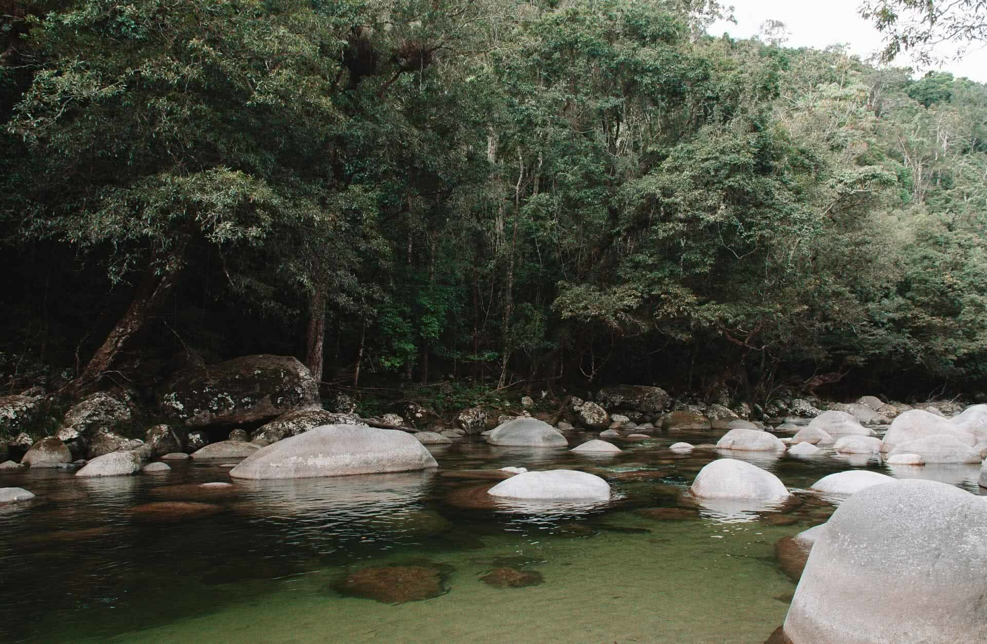 mossman gorge Swimming Hole, Jaime wilson, Great Barrier Reef Drive – This Road Trip North From Cairns Has It All, Tropical North Queensland, wild swimming, gorge