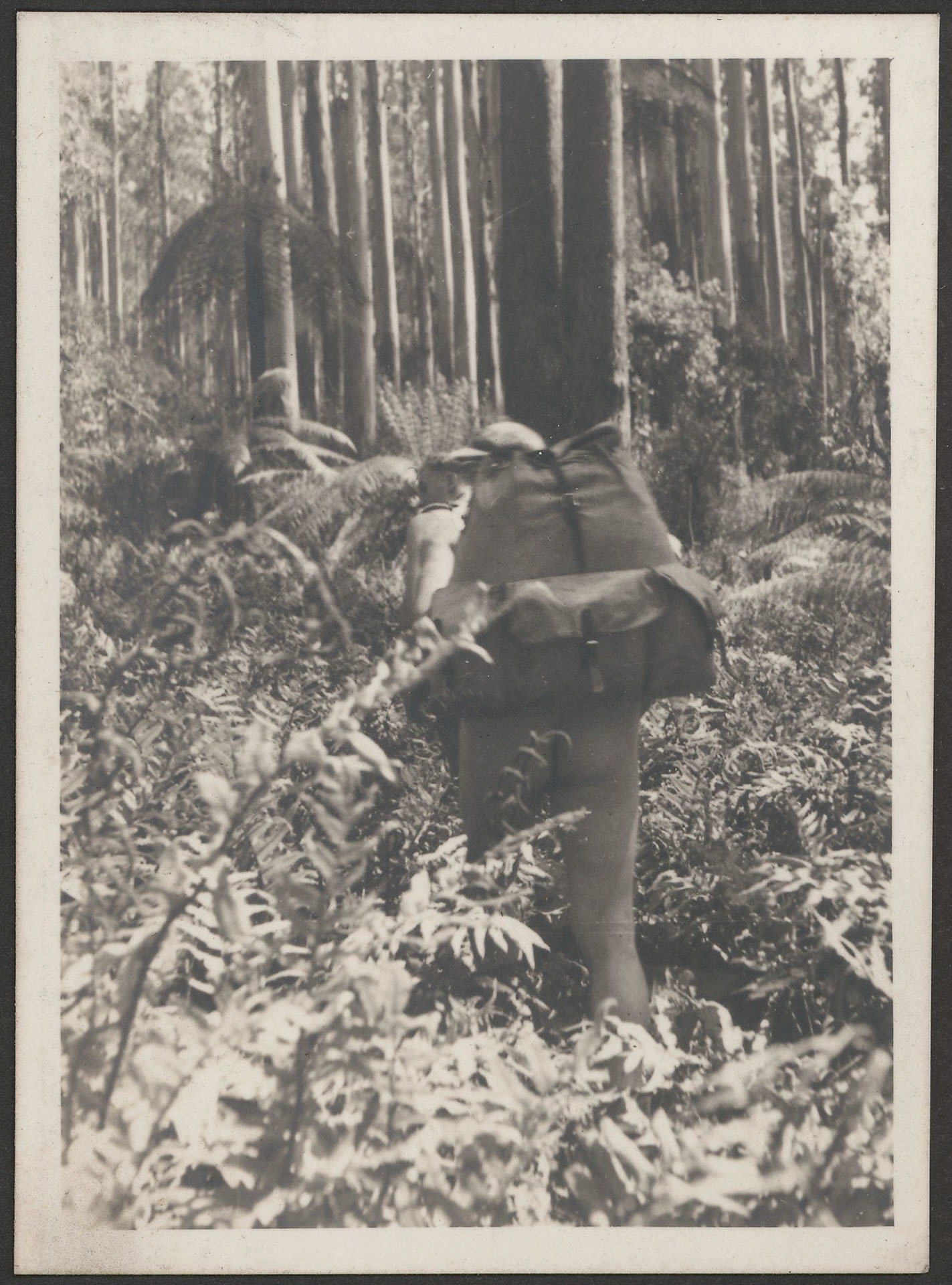 Naked fern hiker 1937 CP FREE SLV, the Intriguing History (and Exciting Future) of Hiking Clothing