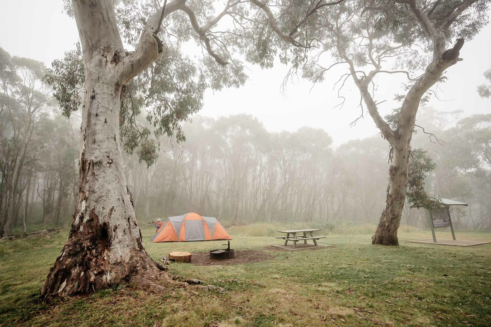 federal falls campground, Love Wine, Fancy Snacks, and Adventures? Head Straight to Orange!, photo by Lorena Rabbani, orange, nsw, cool summer