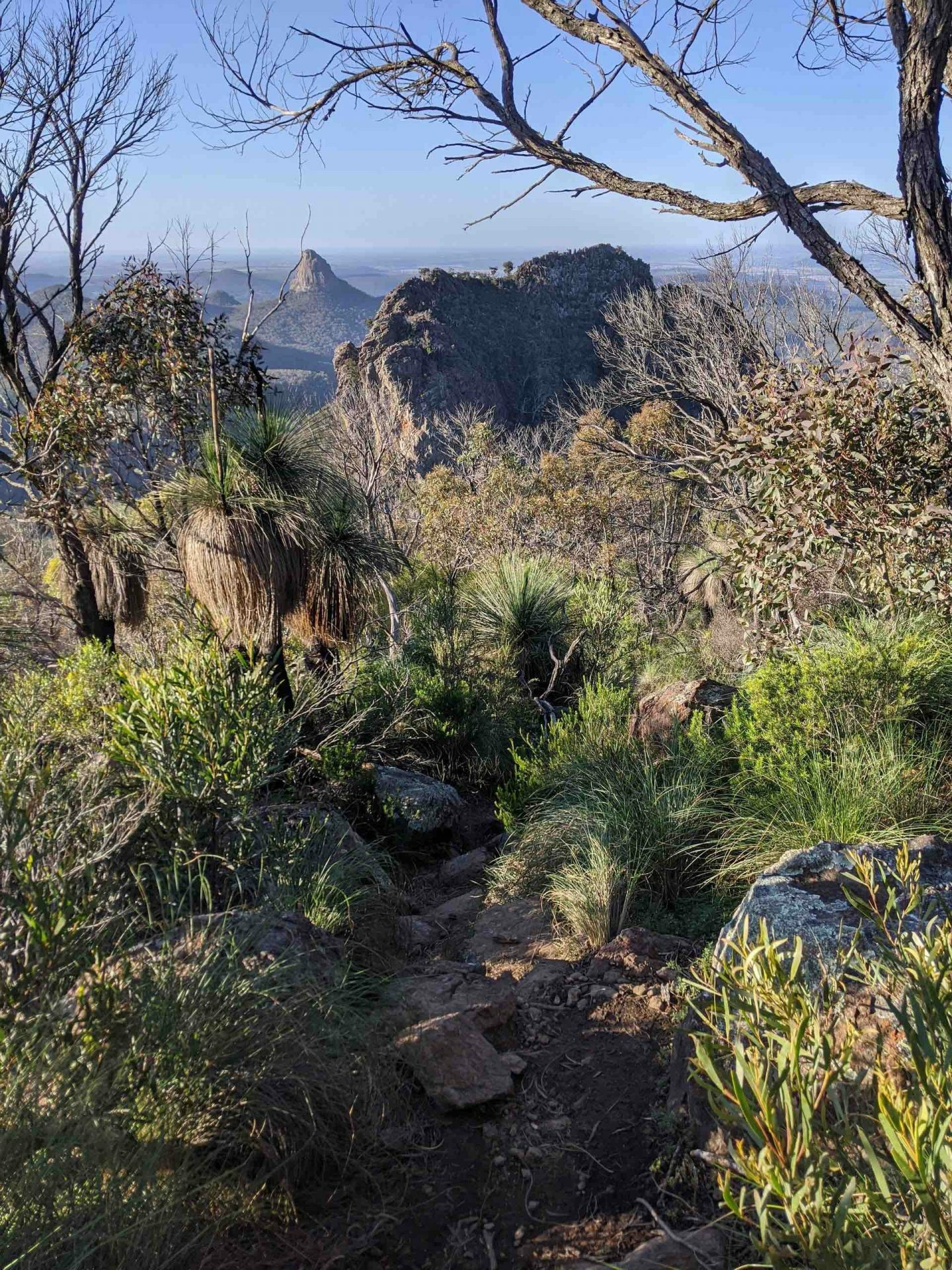 Mt Bluff hike, amy fairall, warrumbungles, grand high tops, nsw