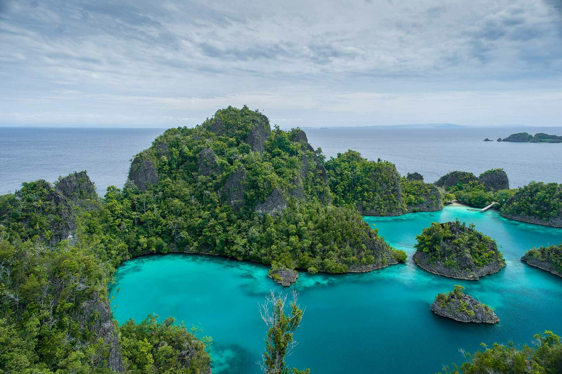 Why It's Worth Choosing An Ethical Wildlife Tour, lewis burnett, phillipines,