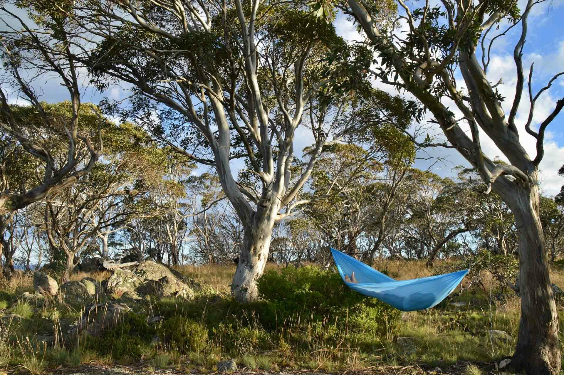Pat enjoying relaxing in the hammock, Fast & Light – A Mt Gingera Overnight Hike in Under 24 Hours, Alice Wisse, ultralight, australian capital territory