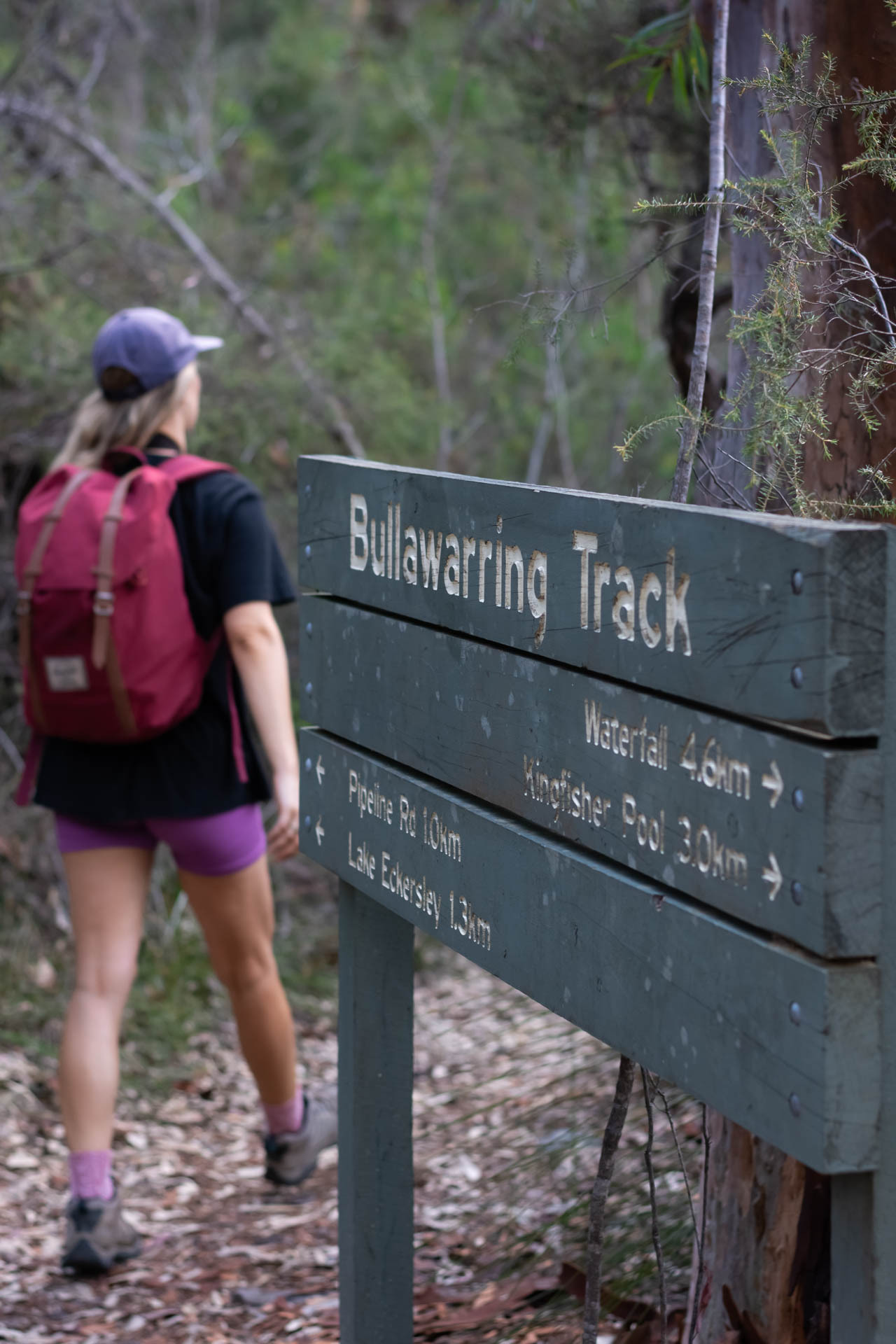 Is AllTrails Pro a Hiking App Worth Paying For?, Photos by Matt Pearce, Bullawarring track, heathcote national park, nsw, hikes near sydney
