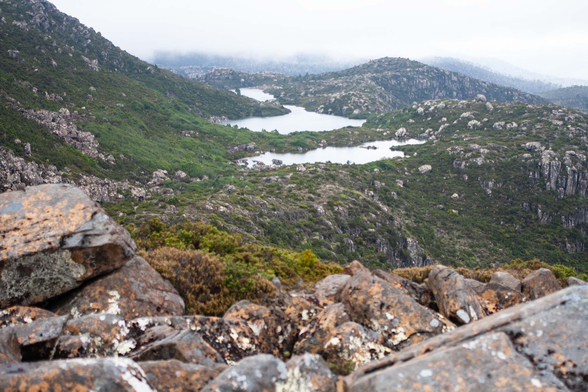Approaching the first Tarn, The Tarn Shelf – Tasmania's Best Day Hike You've Never Heard Of, casey fung, tarn shelf, mt field national park, tasmania, lake, alpine, the tarn shelf