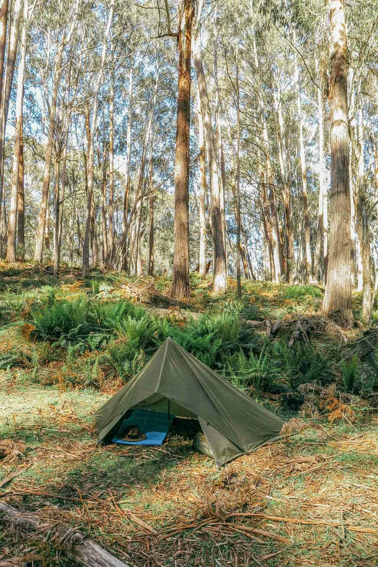 How To Camp Under a Tarp, kale munro, tarp camping, shelter, lil tent