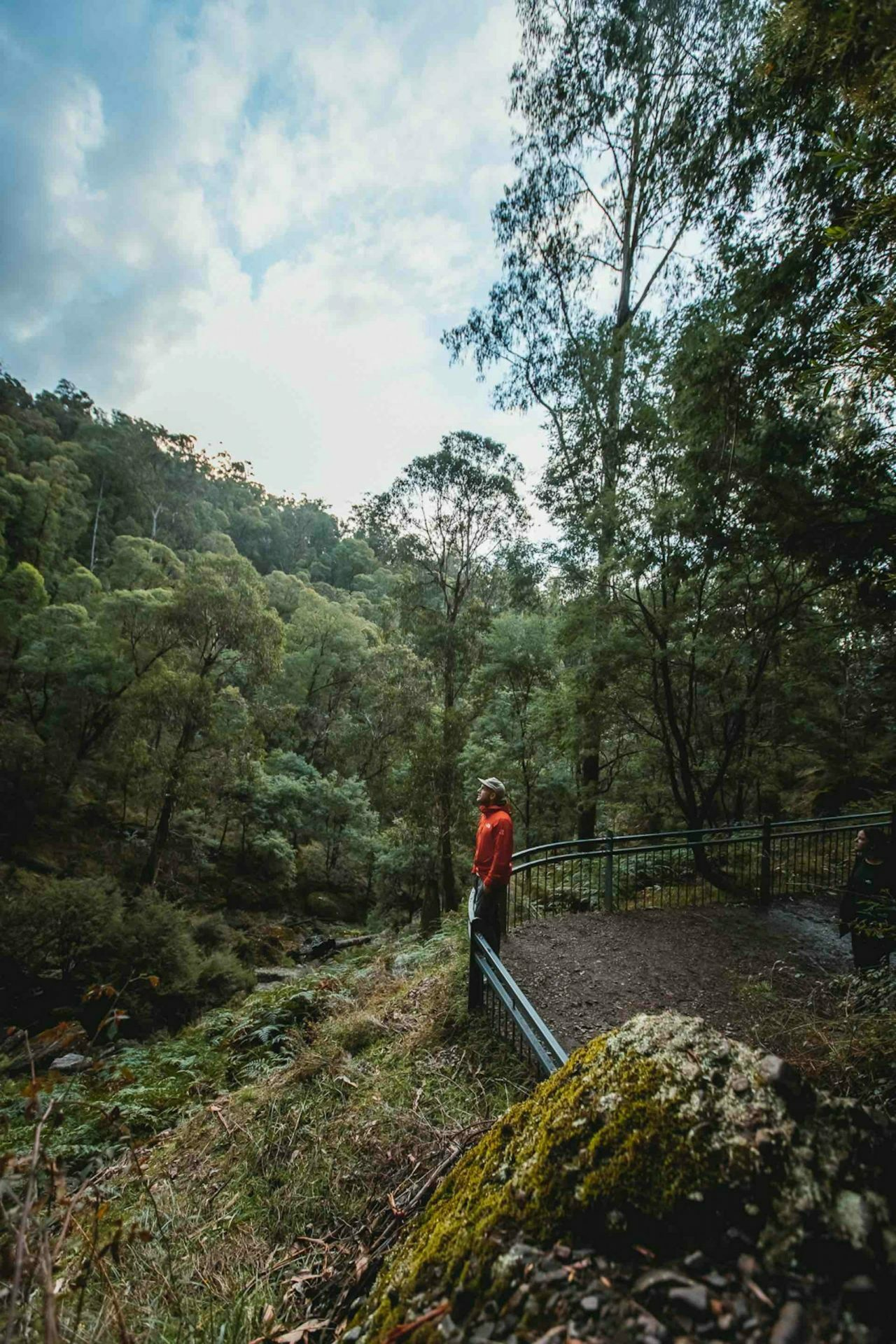 Embracing Courage in the King Valley, Bee Stephens, Wangaratta, Paradise Falls.