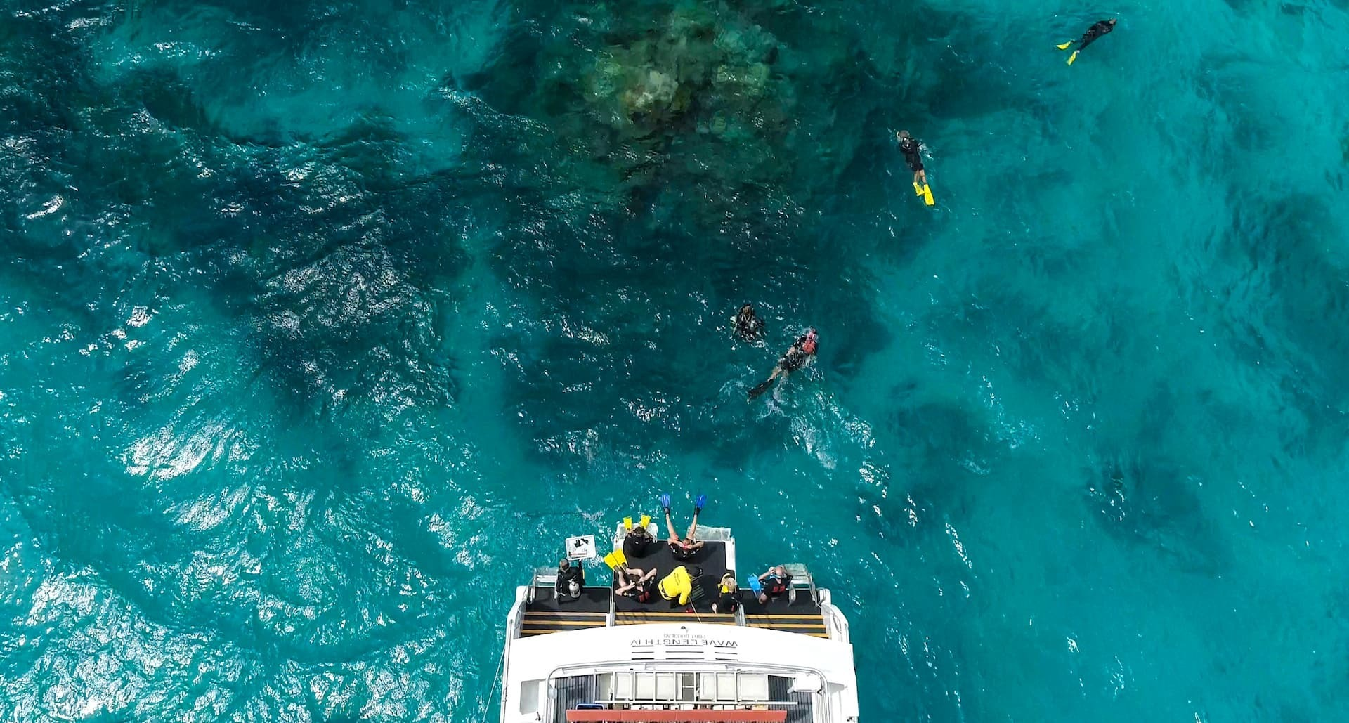 A New Spiced Rum Brand Is Helping Regrow The Great Barrier Reef, reeftip drinks co. coral growth, spawning, nursery, great barrier reef, diving, boat